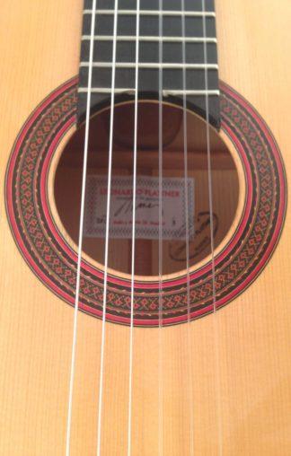Flamenco-guitar-Leonardo-Plattner-2012-rosette